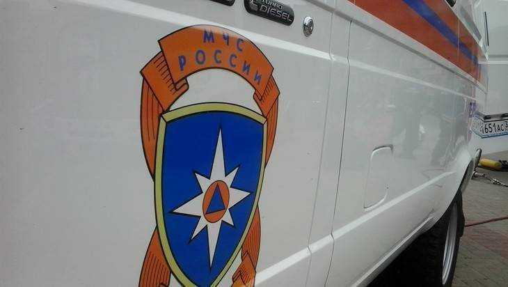 На заводе в Новозыбкове пришлось 8 часов тушить пожар