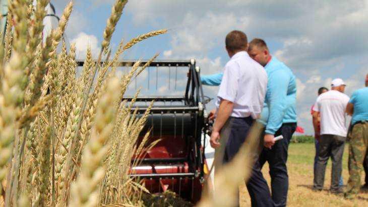 Брянские власти пообещали невиданный урожай зерновых