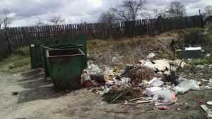В брянские районы  с закрытием полигонов пришла мусорная напасть