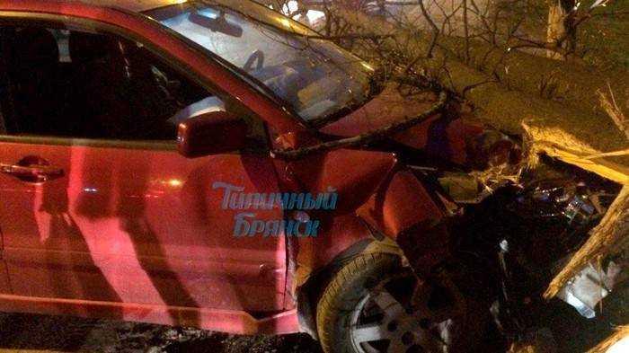 В Брянске пьяный лихач срезал дерево