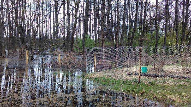 Жители брянского села пожаловались на захватившего озеро коммерсанта
