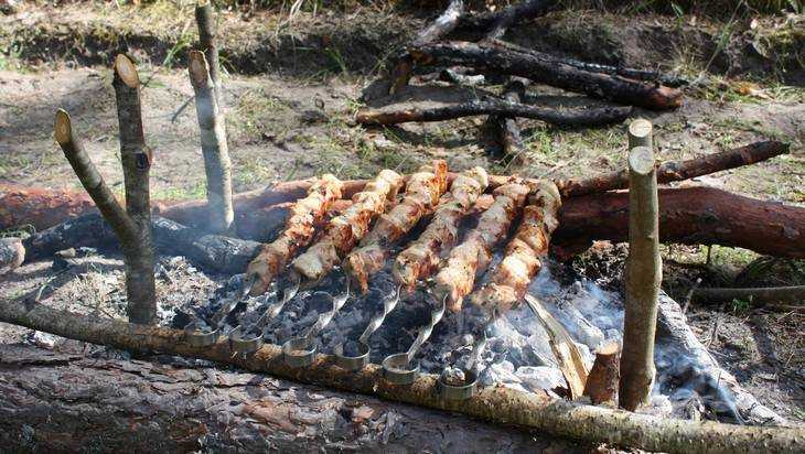 Брянский губернатор запретил разжигать костры до 10 мая