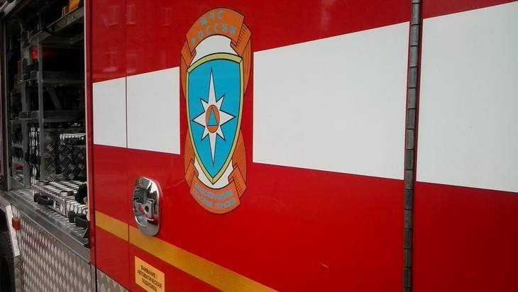 Под Брянском сняли видео серьезного пожара у пруда