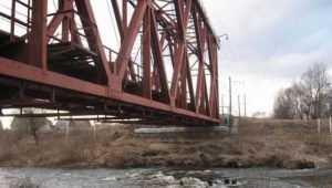 Начато расследование гибели брянца, спрыгнувшего с моста в Снежеть