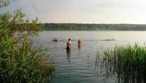 В Новозыбкове заметили купавшихся в холодную погоду брянцев