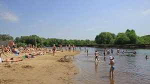 В Брянске для сезона купания подготовят семь пляжей на Десне и озерах