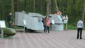 Брянский губернатор отменил плату за посещение Партизанской поляны и музея