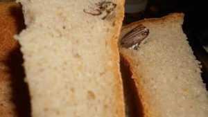 В сети опубликовали фото брянского хлеба с удивительной начинкой