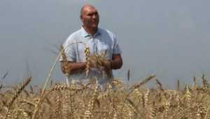 Валуев похвалил брянских тружеников за рекордный урожай на плохой земле