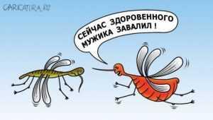 От разъярённых комаров за неделю пострадали десятки брянцев