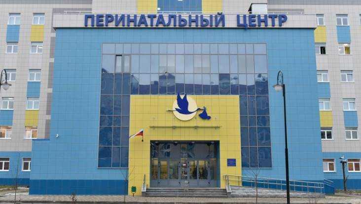 Бардуков пояснил, почему погибли дети в перинатальном центре Брянска