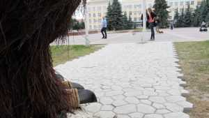 В Брянске началась война из- за перехода на площади Ленина
