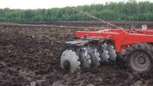 Брянские власти создадут 149 рабочих мест в сельском хозяйстве