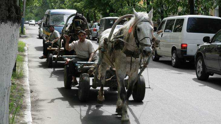 В Брянске за избиение полицейских осудили Дантеса и других цыган