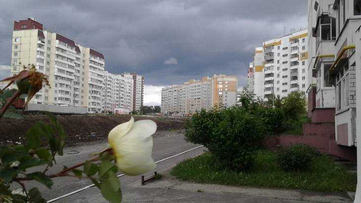 Губернатор велел к осени достроить дорогу на улице Романа Брянского