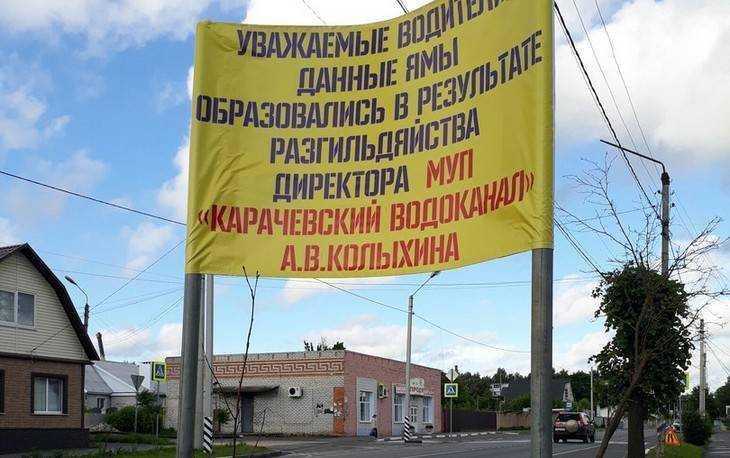 С помощью плаката на обочине брянцы назвали виновника дорожных ям