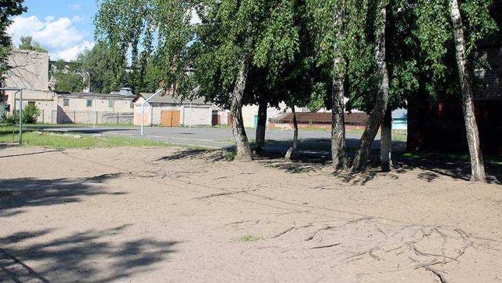 Спортплощадку школы №52 в Брянске признали опасной