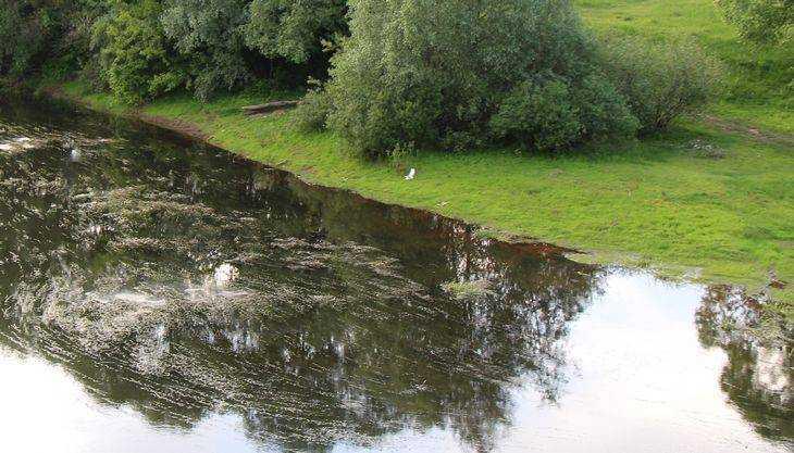 Глава брянского района объяснил скандал с «украденной» рекой
