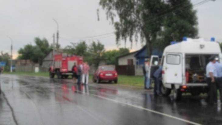 На брянской трассе фура задавила двоих подростков и ранила еще двоих