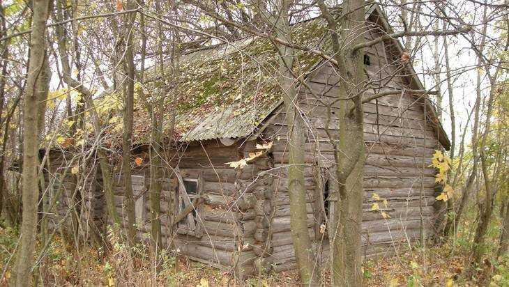 Брянская область лишилась восьми деревень