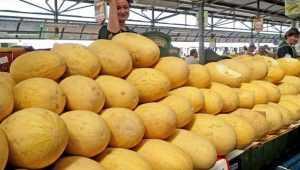 На рынках Брянска обнаружили 400 килограммов дынь с нитратами