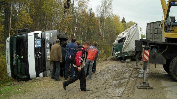 Разбитые дороги Брянска стали причиной 118 ДТП