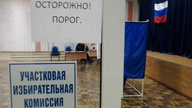 Через брянские урны на выборы в Госдуму пойдет десяток кандидатов
