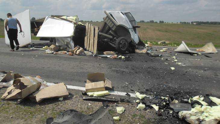 Новые фото приоткрыли тайну трагедии на брянской трассе под Унечей