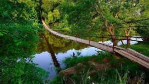 Брянские маниловы начали фантазировать о подвесных мостах