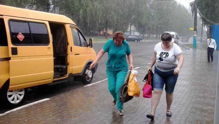 В Брянске у маршрутчиков отберут право повышать цену проезда