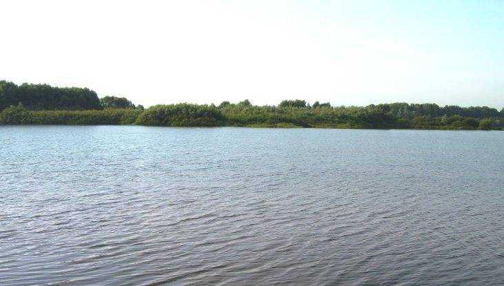 Под Брянском в озере Орлик утонул 34-летний мужчина