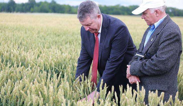 Брянский губернатор предсказал хороший урожай зерновых