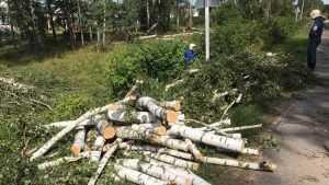 В Новозыбкове без света остаются еще 6 тысяч человек