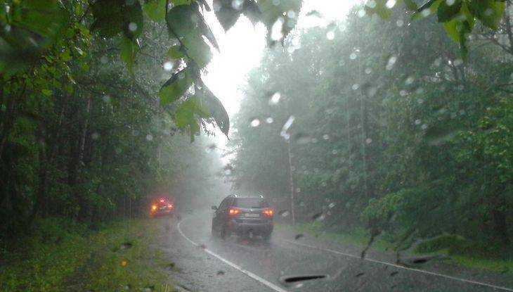 Грозы с градом и ураганным ветром обрушатся на Брянскую область