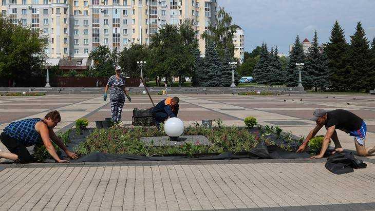 В Брянске с весны высадили 250 тысяч цветов