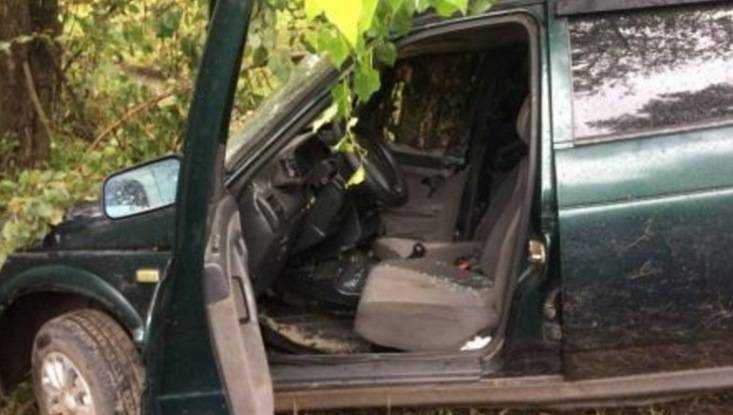 В Брянске разбилась 26-летняя автомобилистка, протаранившая дерево