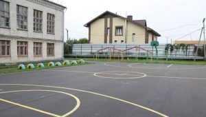 В брянской школе №45 исправили брак фирмы «Рога и копыта»
