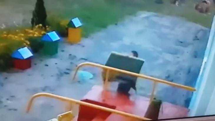 В Новозыбкове сняли видео забавной кражи дивана из детсада