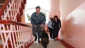 В День знаний брянские школы возьмут под охрану более 1000 полицейских