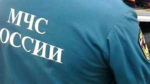 Суд Брянска арестовал пойманного на взятке начальника отделения  ГУ МЧС