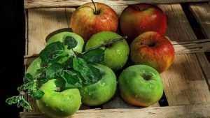 В Брянске пройдет фестиваль «Яблочный Спас»