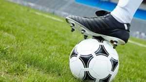 Брянские мальчишки получат от Путина на дворовый футбол 2 миллиона