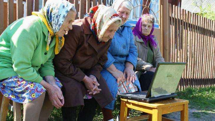 В 317 брянских деревень и сел пришел бесплатный интернет
