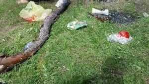 Брянский парк «Металлург» превратили в свалку