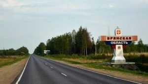 Брянщина оказалась аутсайдером в рейтинге регионов с привлекательным будущим