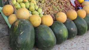 Брянцев начали травить опасными дынями и арбузами