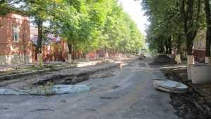 В Брянске на бульваре Гагарина и в Семеновском сквере спилят 72 дерева