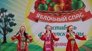 В Брянске с пирогами и кино открылся фестиваль «Яблочный спас»