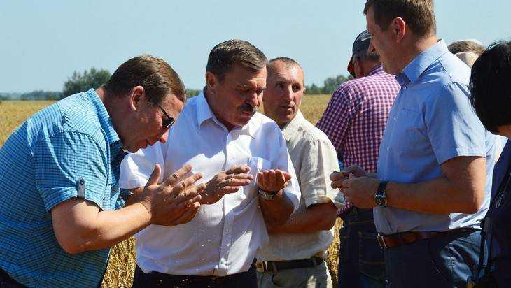 Брянский губернатор предостерег фермеров от опасного головокружения