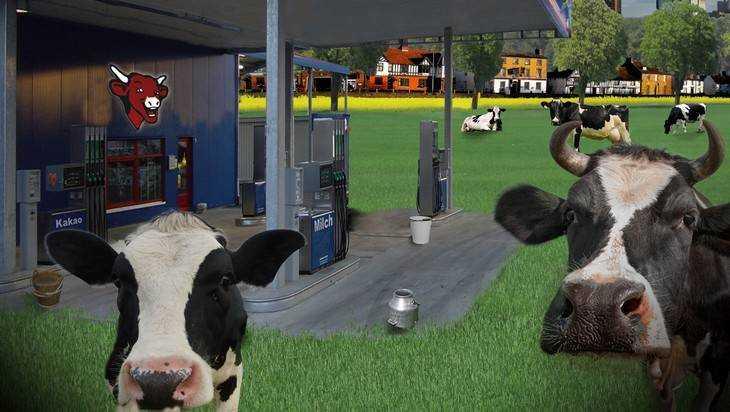 Под Брянском легковушка врезалась в корову – пострадали три человека